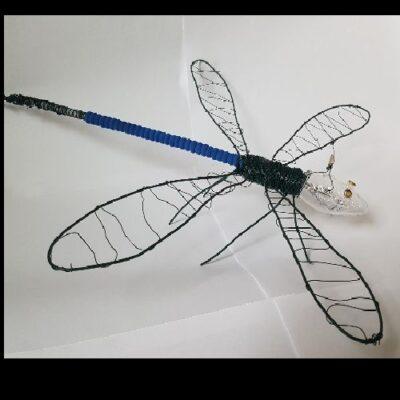 Samuel-Müller-Insekt